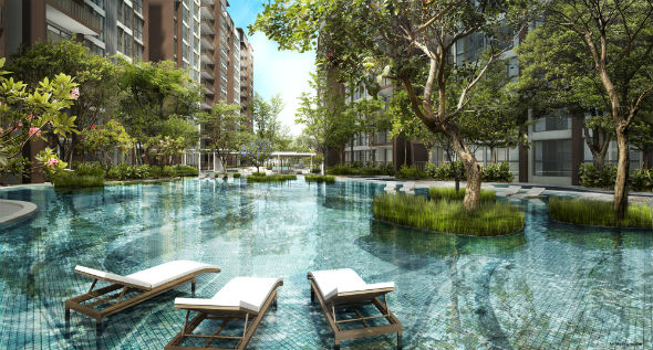 bellewoods_ec_woodlands_aquatic_forest_pool